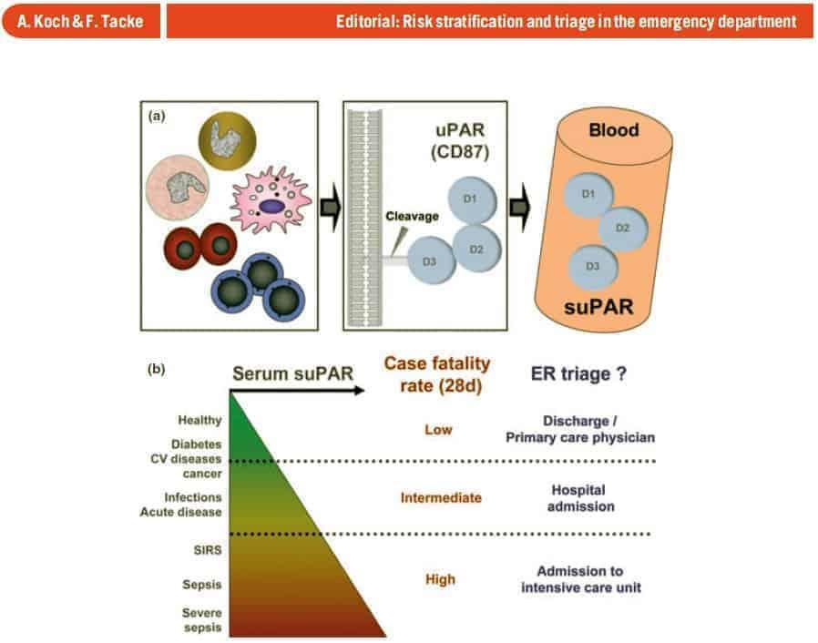 suPAR level overview